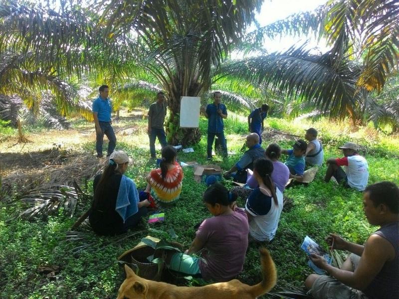 Harus ada Kolaborasi Semua Perusahaan Besar Perkebunan Sawit untuk Membina Petani.