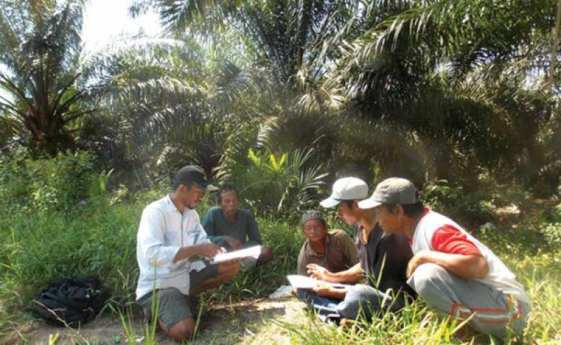 SPKS : Petani Swadaya 9 Desa di Musi Banyuasin Dipetakan