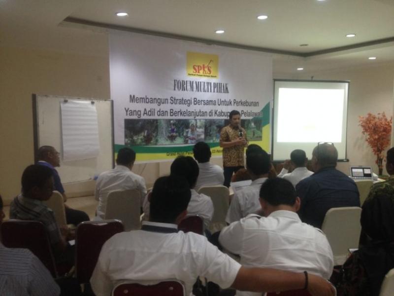 Forum Multi Pihak : Membangun Stategi Bersama Untuk Perkebunan Yang Adil dan Berkelanjutan di Kabupaten Palalawan