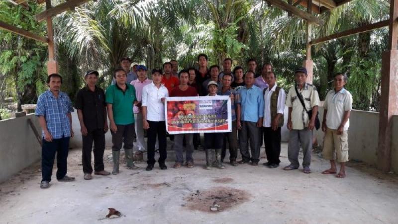 Petani Sanggau Bakal Hadir Dalam Rembug Nasional Petani Kelapa Sawit